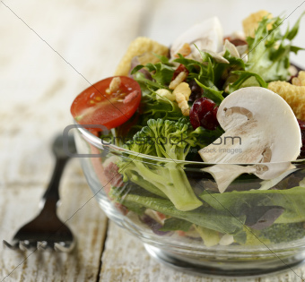 Fresh Salad Bowl