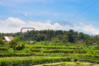 Volcano under clouds and tropical rural area
