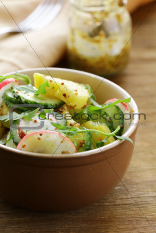 potato salad with cucumber and radish dressed with mustard