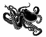 Ocean octopus
