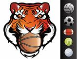Tiger Face with Sports Balls