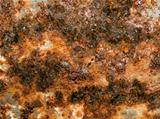 Rusted texture closeup background.