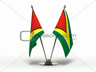 Miniature Flag of Guyana (Isolated)