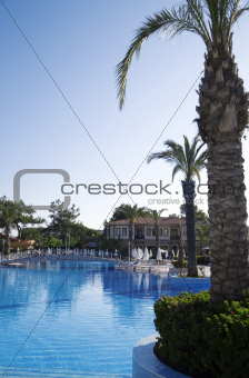palm trees near blue pool in luxury tourist resor