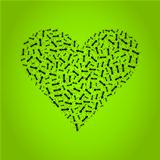 Ant heart
