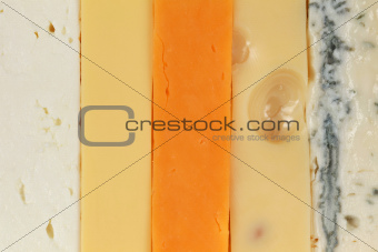 Five different types of cheese