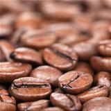 Coffee beans with shallow depth of field
