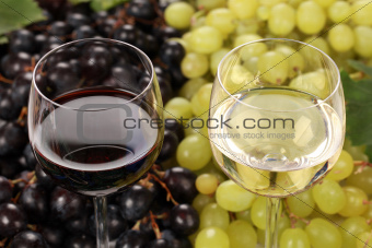 White wine and red wine in glasses