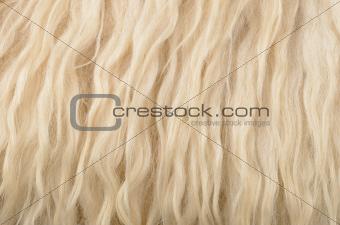 close up sheepskin texture background