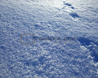 background of white snow