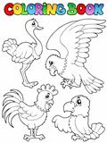 Coloring book bird image 1