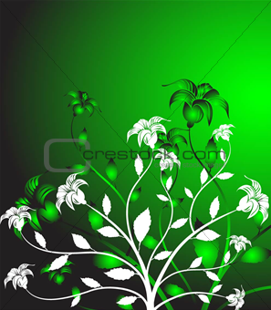 Floral abstract - vector