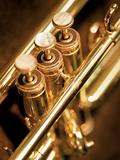 Trumpet valves
