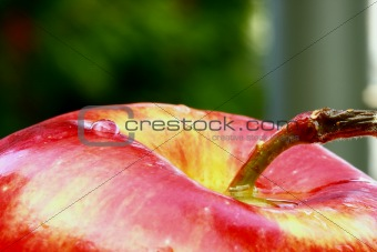 water drops on the apple