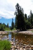 Yosemite Water stream Scenery  Yosemite National Park