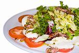 Mozzarella Dish