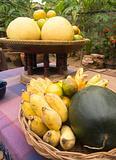 Tropical fruit in a garden