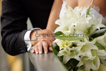 Wedding Rings Portrait