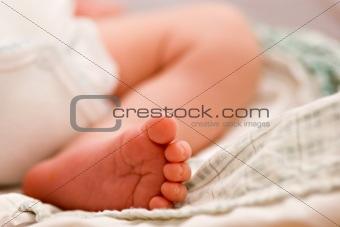 Baby Leg