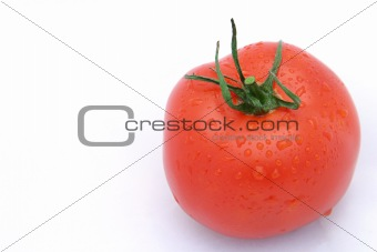 Tomato On White Horizontal