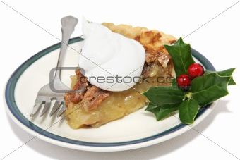 Slice of Christmas Pie