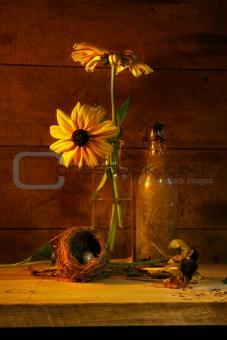 Yellow flower still life