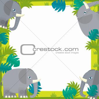 The nature frame - safari