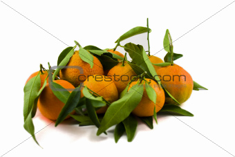 Mandarins with Leafes