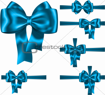 Blue ribbon and bow set