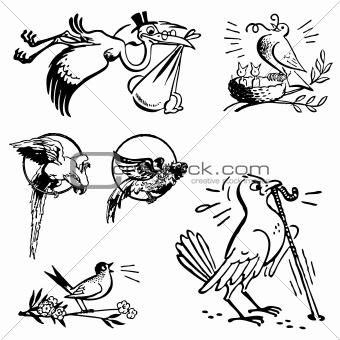 Vector Retro Bird Graphics