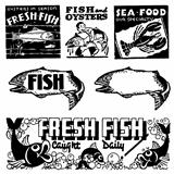 Vector Retro Seafood Graphics