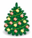 fir-tree  with decorations