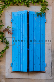 Blue closed window with green plants