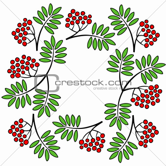 Mountain ash branches frame