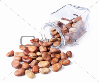beans scattered on a white background