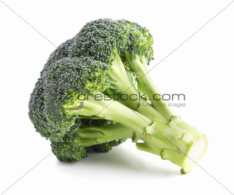 Fresh broccoli isolated on a white