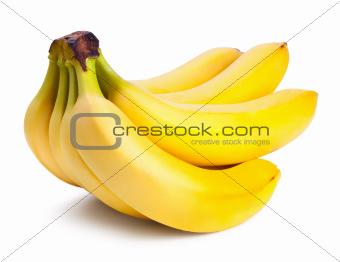 Fresh ripe bananas bunch isolated on white