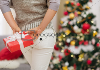 Closeup on Christmas present box holding by woman behind back
