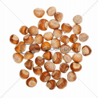 The heap of hazelnuts
