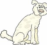 poodle dog cartoon illustration