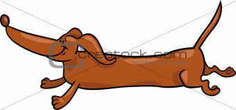 running dachshund dog cartoon illustration