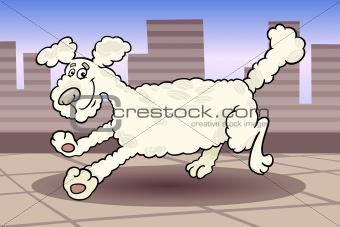 running poodle dog cartoon illustration