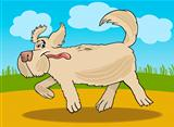 Running sheepdog dog cartoon illustration