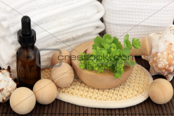 Ladies Mantle Spa Treatment