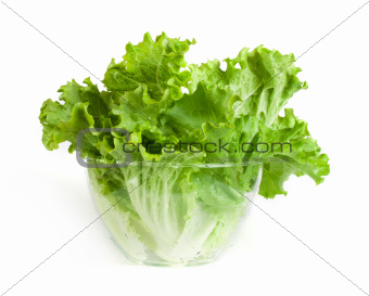Lettuce in a glass bowl