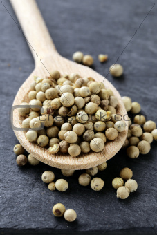 grain white pepper in a wooden spoon