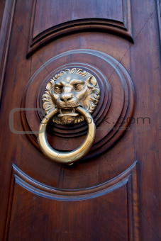 lion head shaped door handle