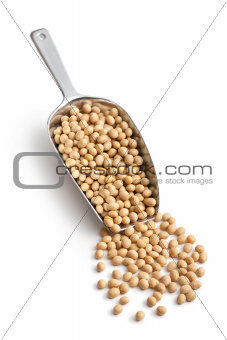 soy beans in scoop