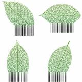 Leaf Barcode