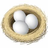 Nest Eggs